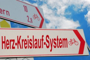Radfahren stärkt das Herz-Kreislauf-System