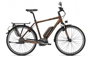 E-Bike Raleigh Stoker BS 360 Harmony mit Bosch Performance Line-Antrieb