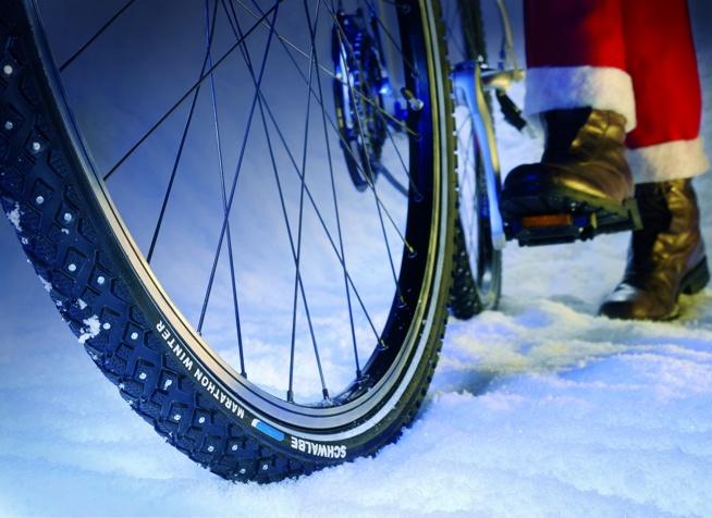 Spikefahrradreifen Marathon Winter von Schwalbe